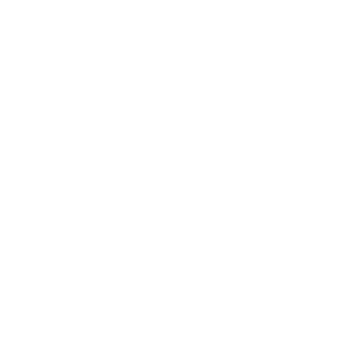 THE BUDD GROUP white logo