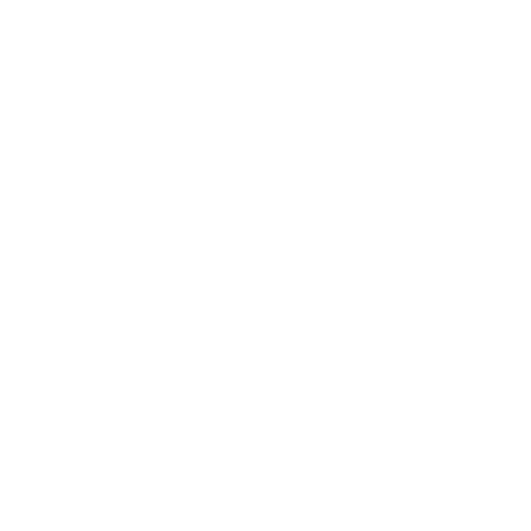 New Budd Group Logo White